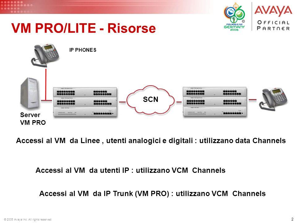 VM PRO/LITE - Risorse SCN. Server. VM PRO. IP PHONES. Accessi al VM da Linee , utenti analogici e digitali : utilizzano data Channels.