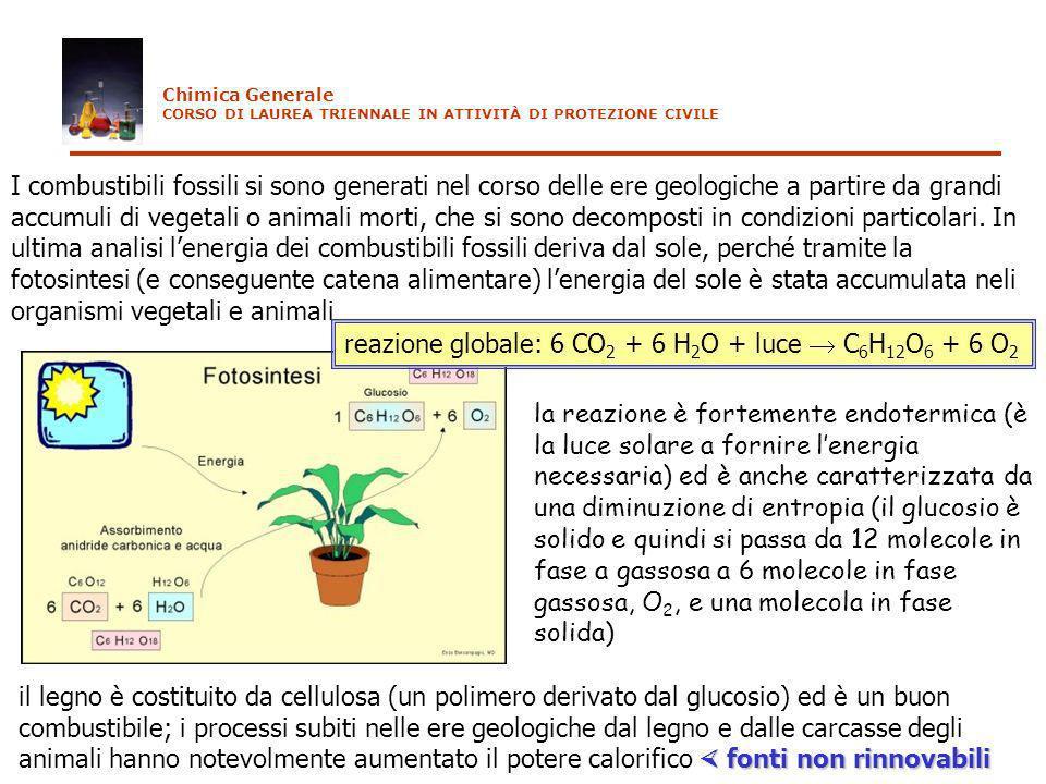reazione globale: 6 CO2 + 6 H2O + luce  C6H12O6 + 6 O2