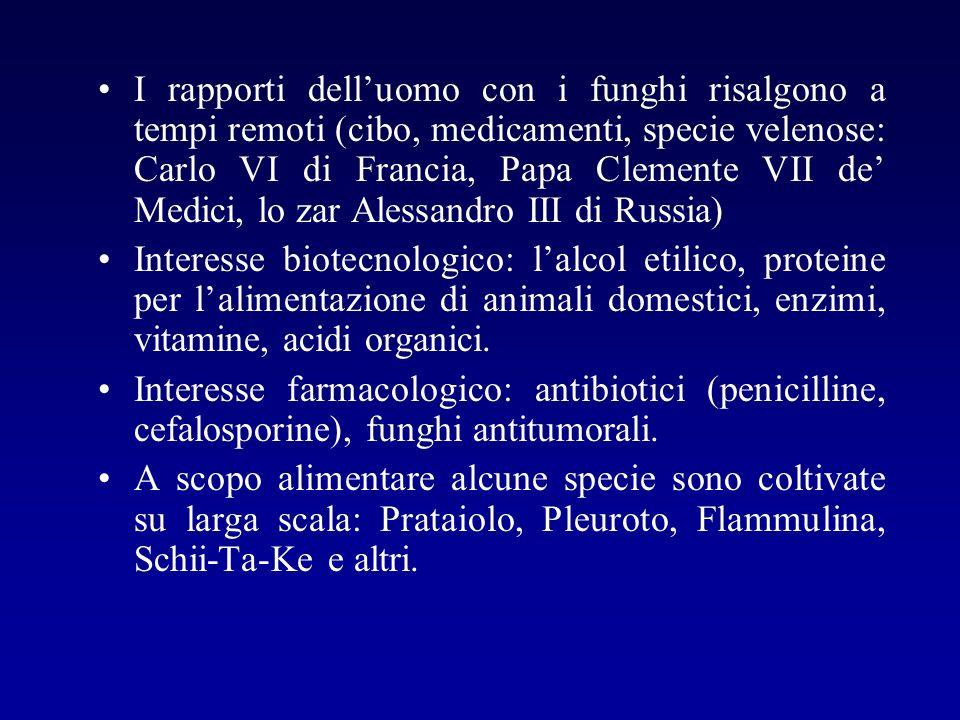 I rapporti dell'uomo con i funghi risalgono a tempi remoti (cibo, medicamenti, specie velenose: Carlo VI di Francia, Papa Clemente VII de' Medici, lo zar Alessandro III di Russia)