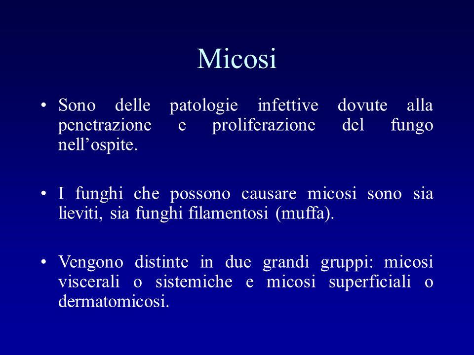 Micosi Sono delle patologie infettive dovute alla penetrazione e proliferazione del fungo nell'ospite.