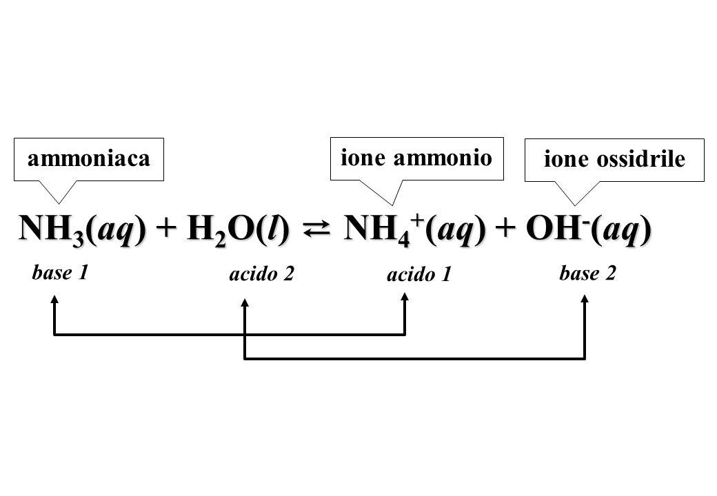 NH3(aq) + H2O(l) ⇄ NH4+(aq) + OH-(aq)