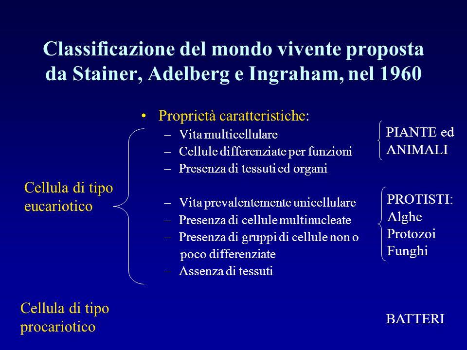 Classificazione del mondo vivente proposta da Stainer, Adelberg e Ingraham, nel 1960