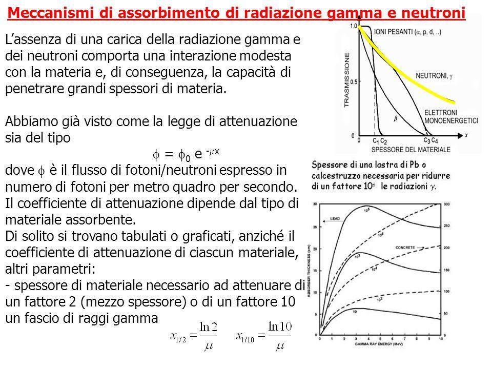 Meccanismi di assorbimento di radiazione gamma e neutroni