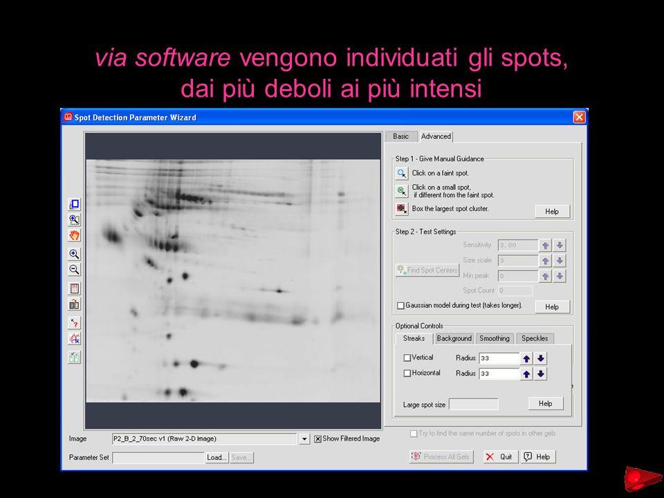 via software vengono individuati gli spots,