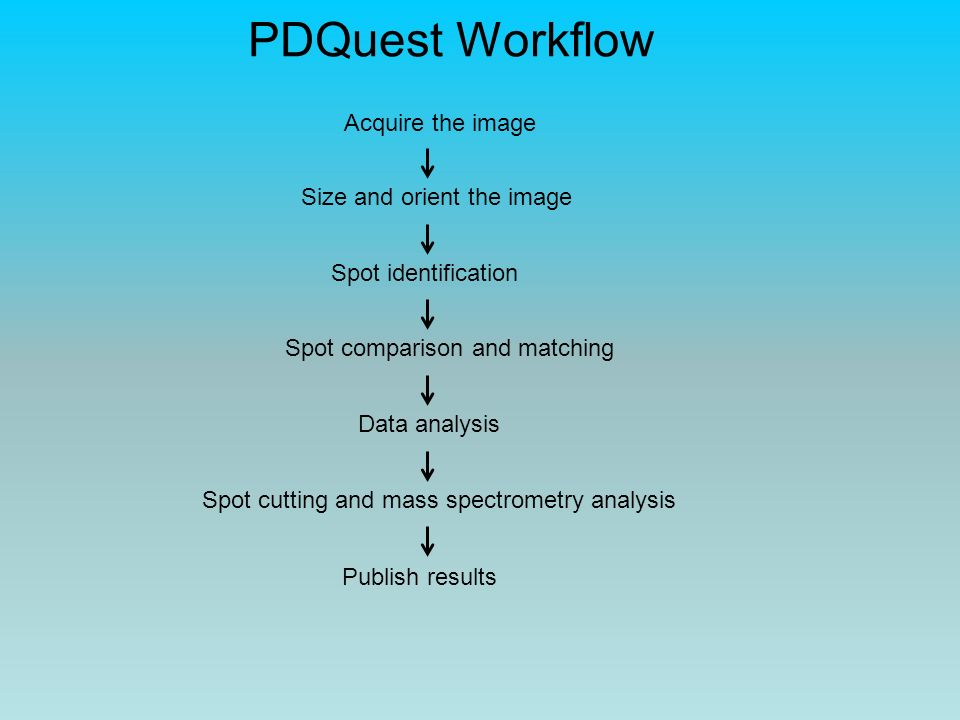 PDQuest Workflow Acquire the image Size and orient the image