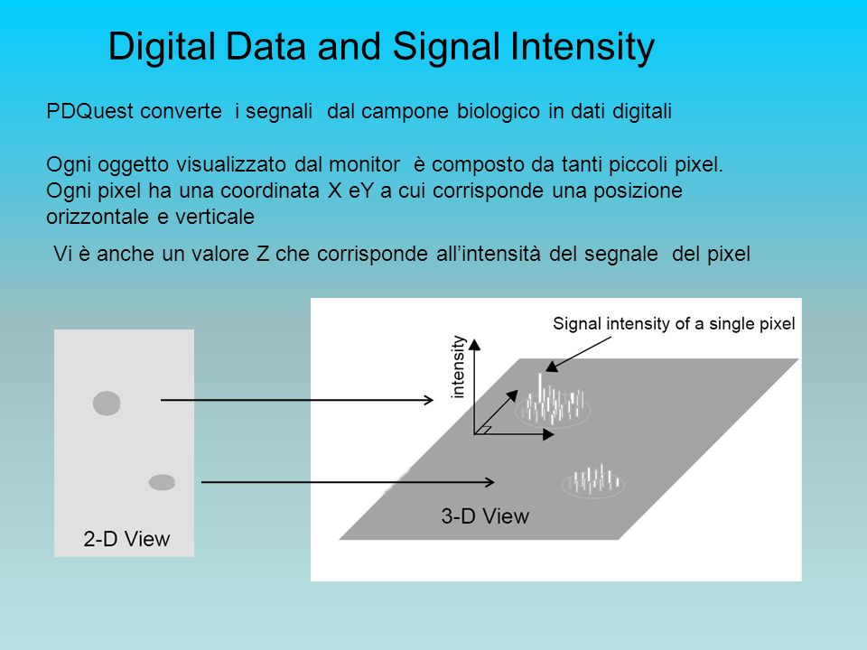 Digital Data and Signal Intensity