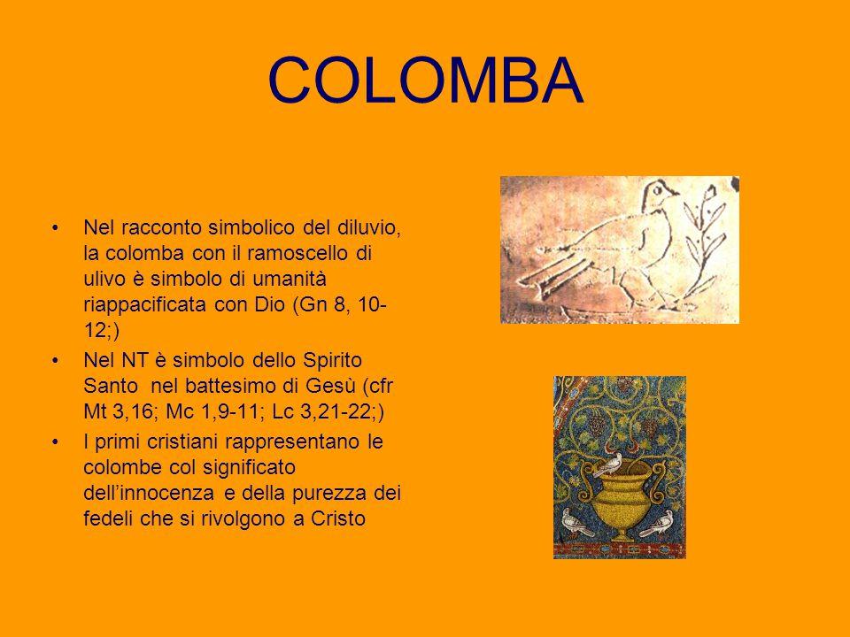 COLOMBA Nel racconto simbolico del diluvio, la colomba con il ramoscello di ulivo è simbolo di umanità riappacificata con Dio (Gn 8, 10-12;)