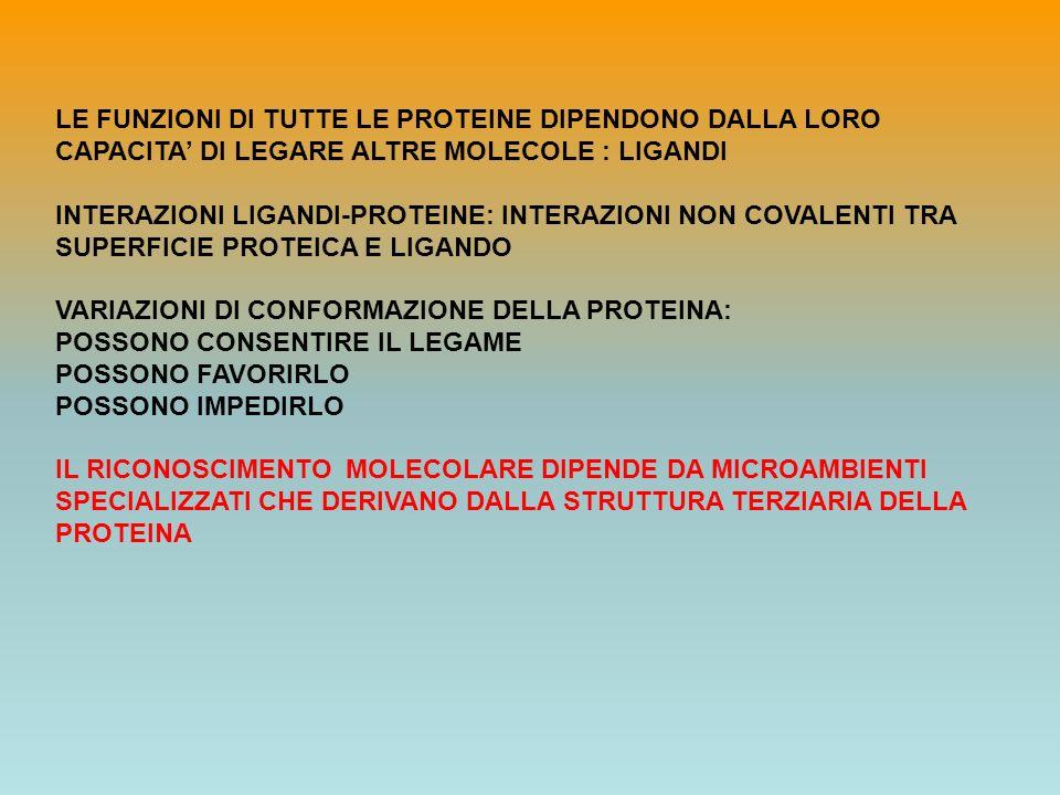 LE FUNZIONI DI TUTTE LE PROTEINE DIPENDONO DALLA LORO CAPACITA' DI LEGARE ALTRE MOLECOLE : LIGANDI