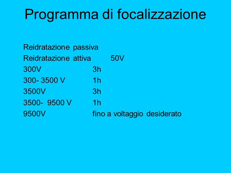 Programma di focalizzazione