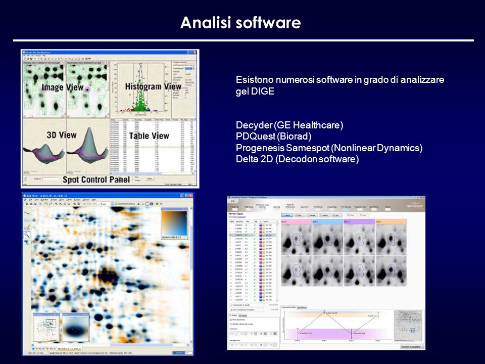 Analisi software Esistono numerosi software in grado di analizzare gel DIGE. Decyder (GE Healthcare)