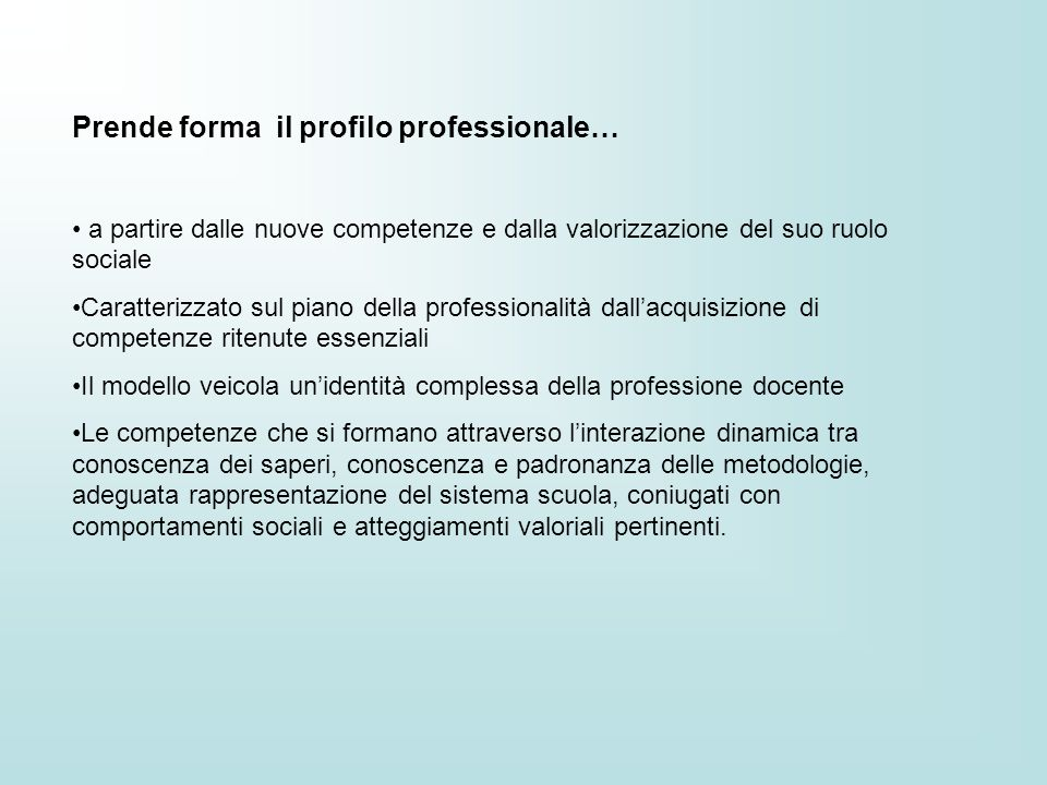 Prende forma il profilo professionale…