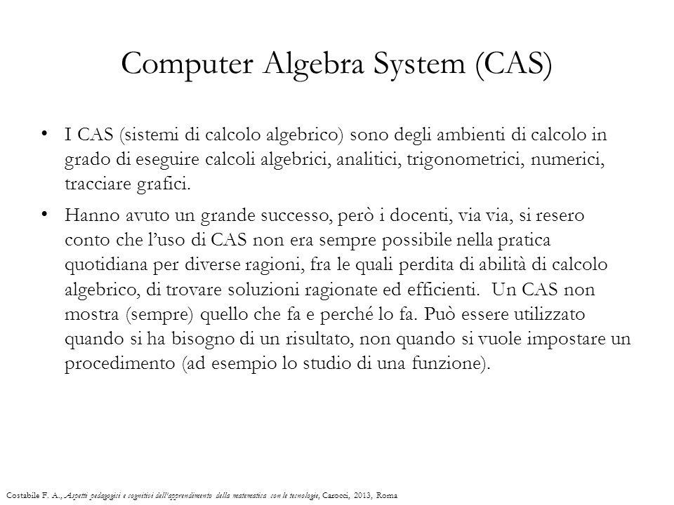Computer Algebra System (CAS)