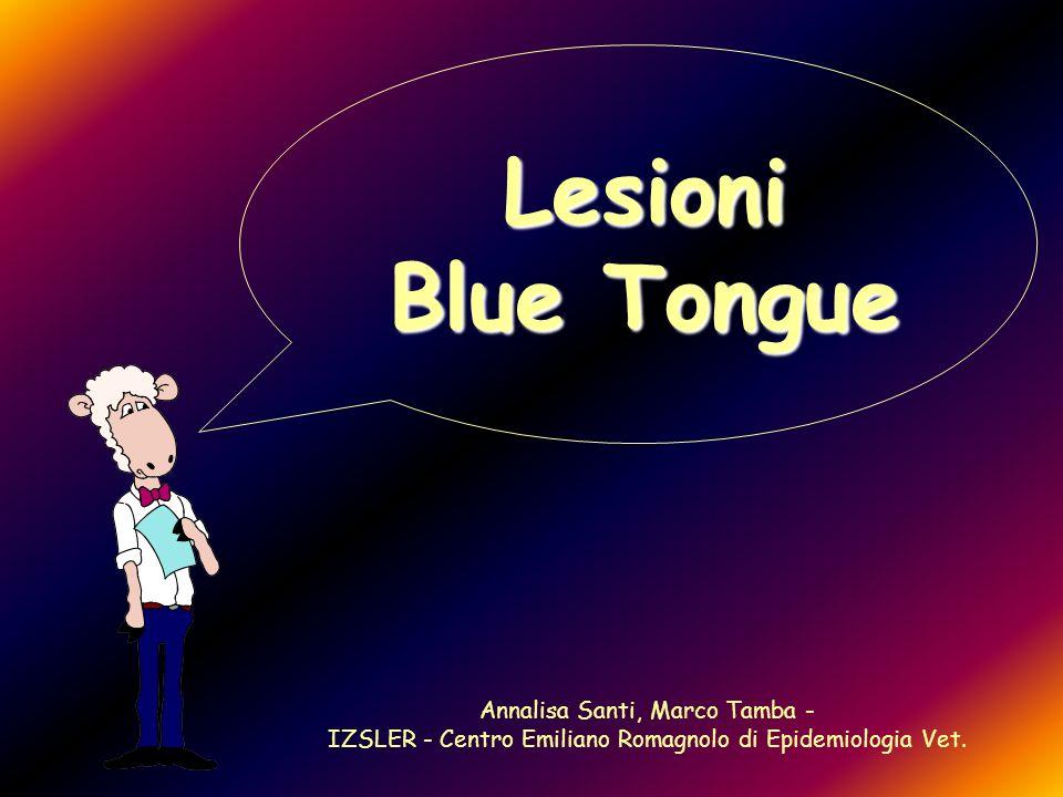 Lesioni Blue Tongue Annalisa Santi, Marco Tamba -