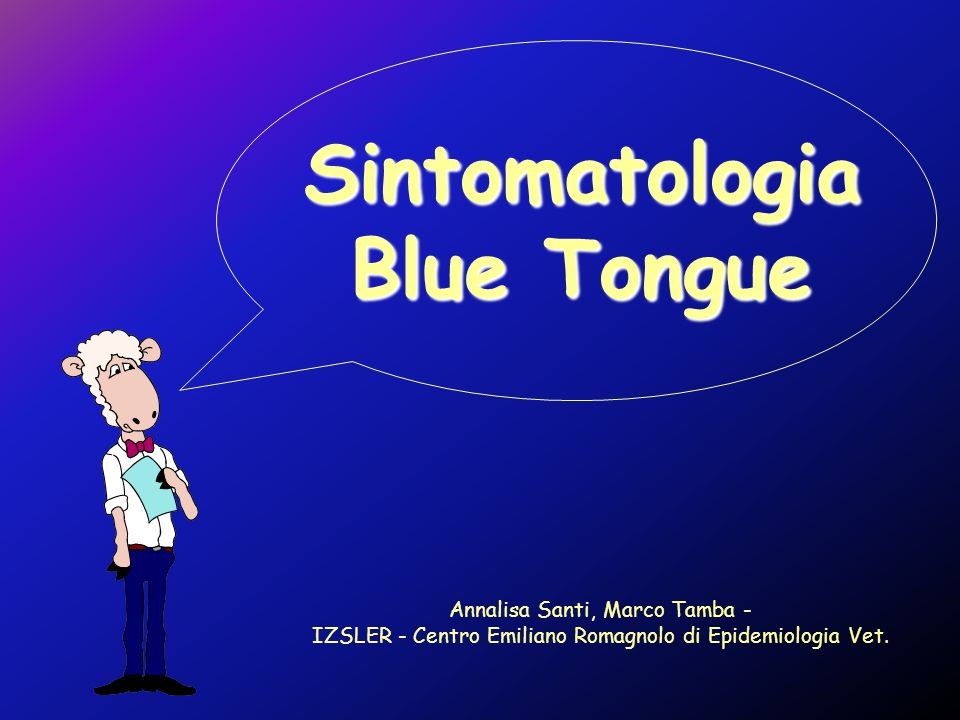 Sintomatologia Blue Tongue