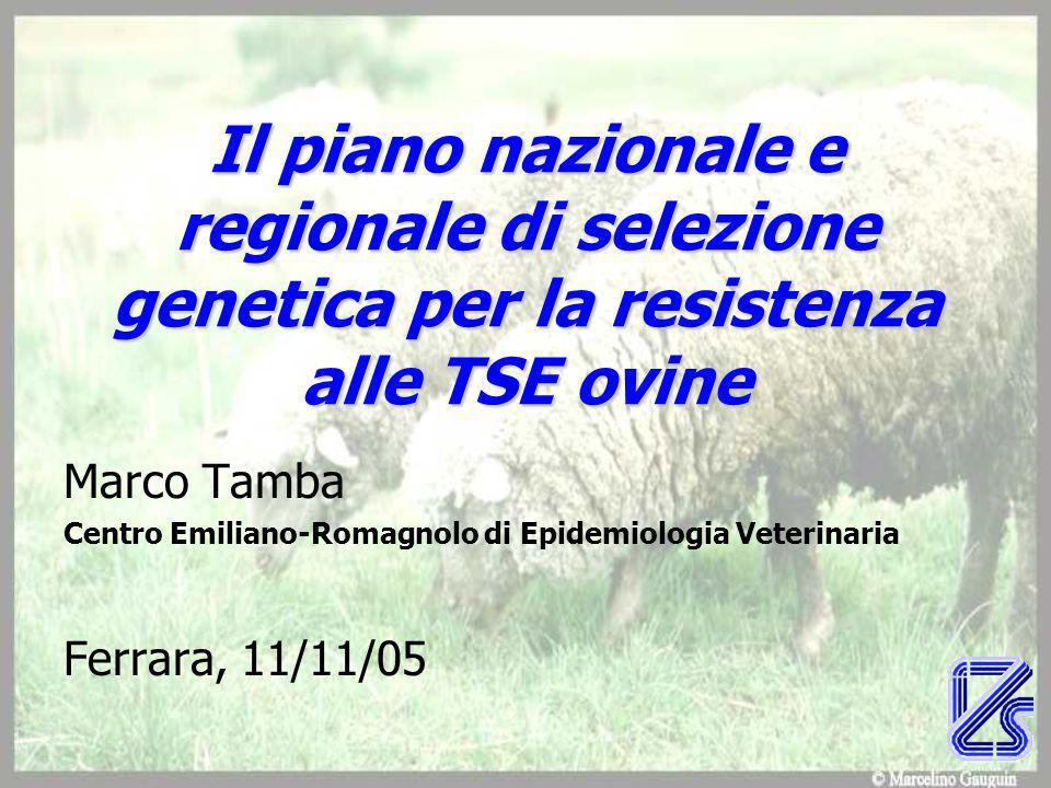 Il piano nazionale e regionale di selezione genetica per la resistenza alle TSE ovine