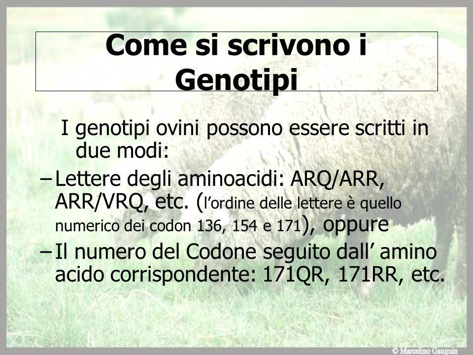 Come si scrivono i Genotipi
