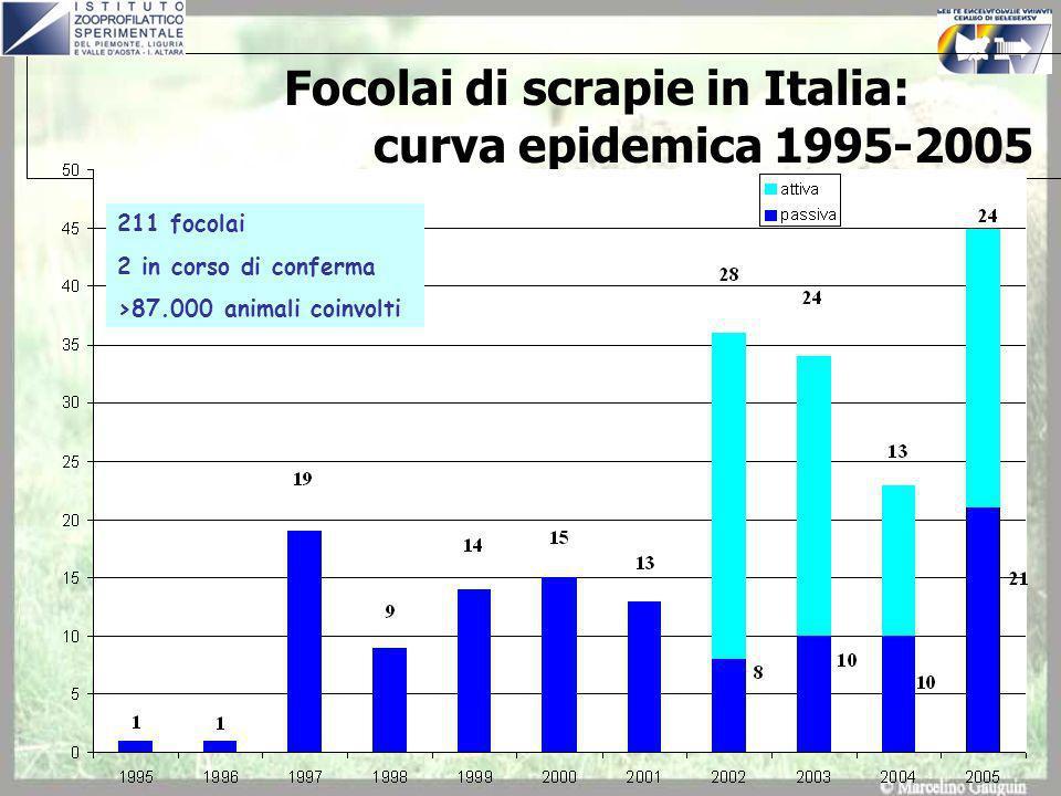 Focolai di scrapie in Italia: