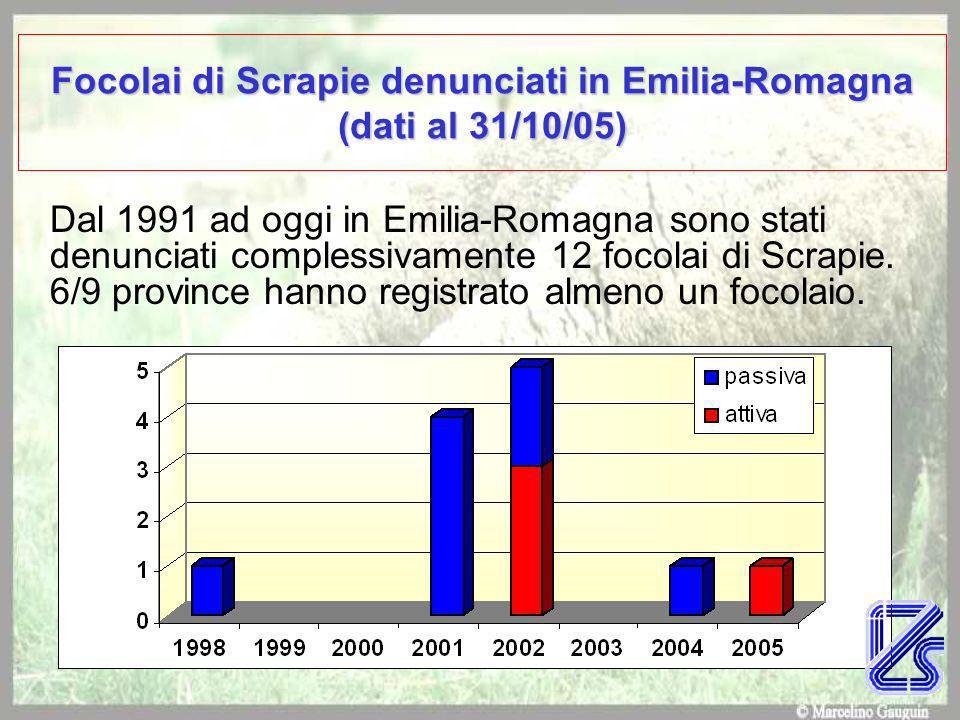 Focolai di Scrapie denunciati in Emilia-Romagna (dati al 31/10/05)