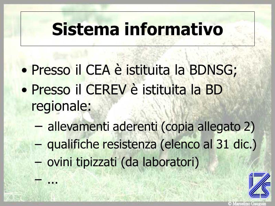 Sistema informativo Presso il CEA è istituita la BDNSG;