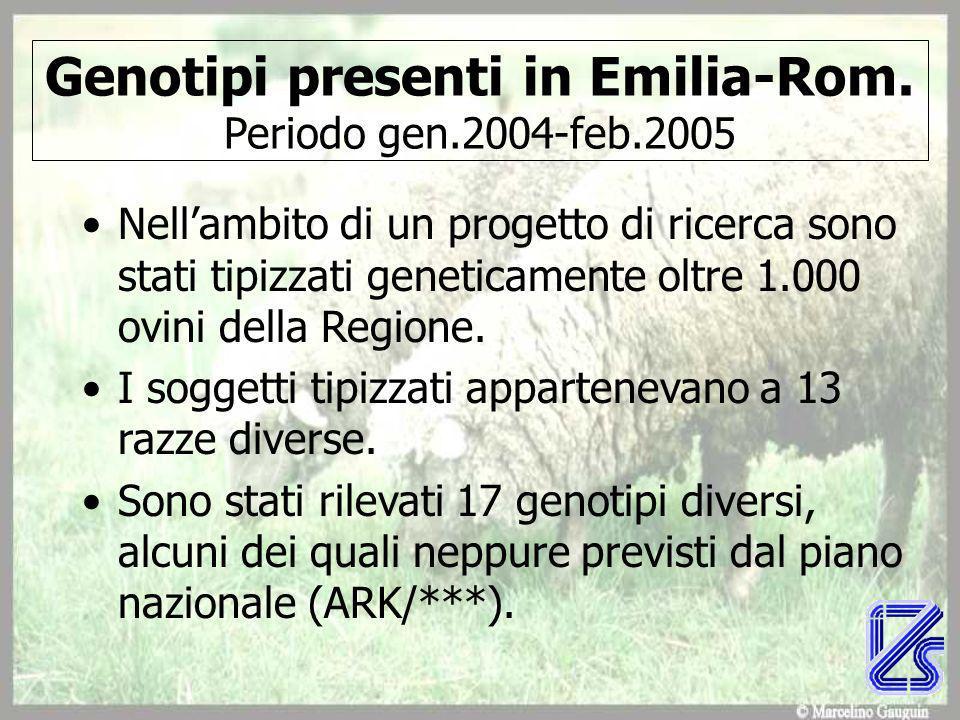 Genotipi presenti in Emilia-Rom. Periodo gen.2004-feb.2005