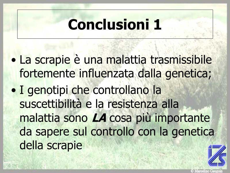 Conclusioni 1 La scrapie è una malattia trasmissibile fortemente influenzata dalla genetica;