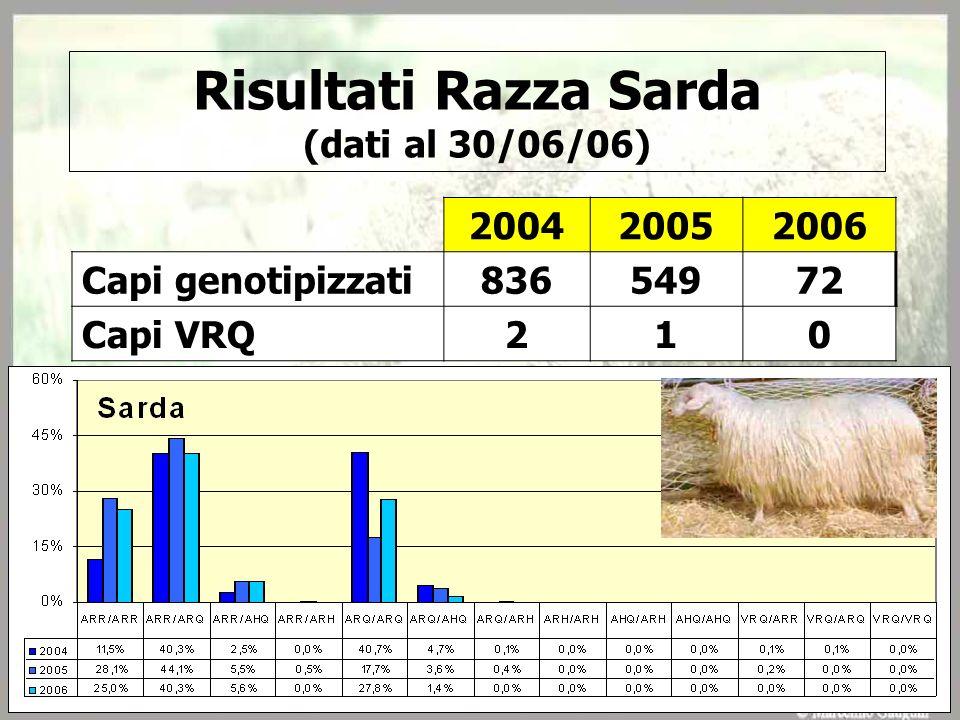 Risultati Razza Sarda (dati al 30/06/06)