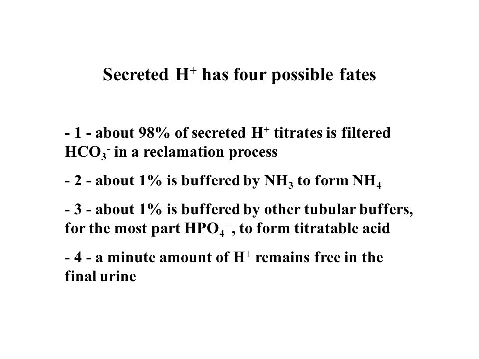 Secreted H+ has four possible fates