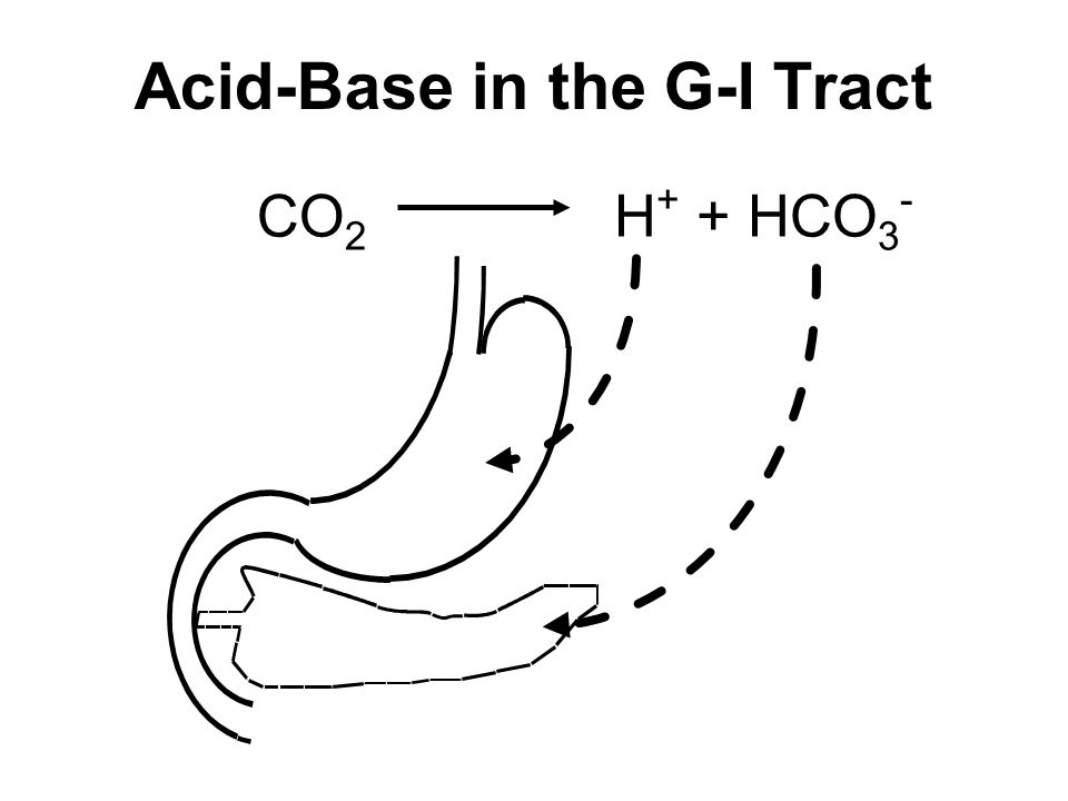 Acid-Base in the G-I Tract