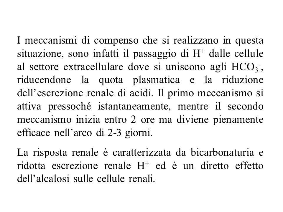 I meccanismi di compenso che si realizzano in questa situazione, sono infatti il passaggio di H+ dalle cellule al settore extracellulare dove si uniscono agli HCO3-, riducendone la quota plasmatica e la riduzione dell'escrezione renale di acidi. Il primo meccanismo si attiva pressoché istantaneamente, mentre il secondo meccanismo inizia entro 2 ore ma diviene pienamente efficace nell'arco di 2-3 giorni.