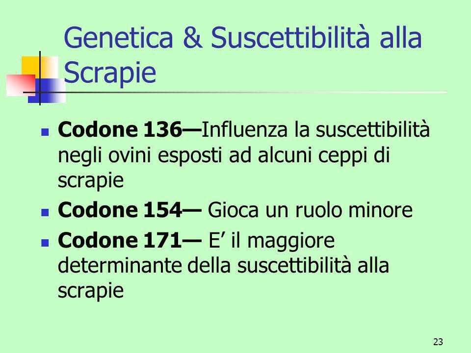 Genetica & Suscettibilità alla Scrapie