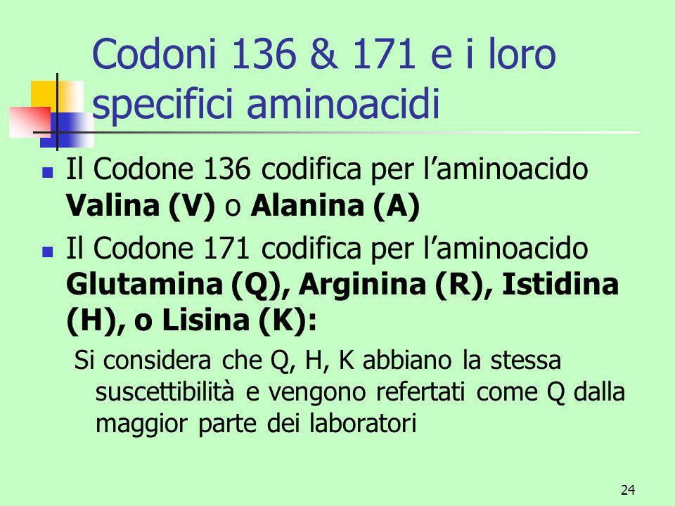 Codoni 136 & 171 e i loro specifici aminoacidi