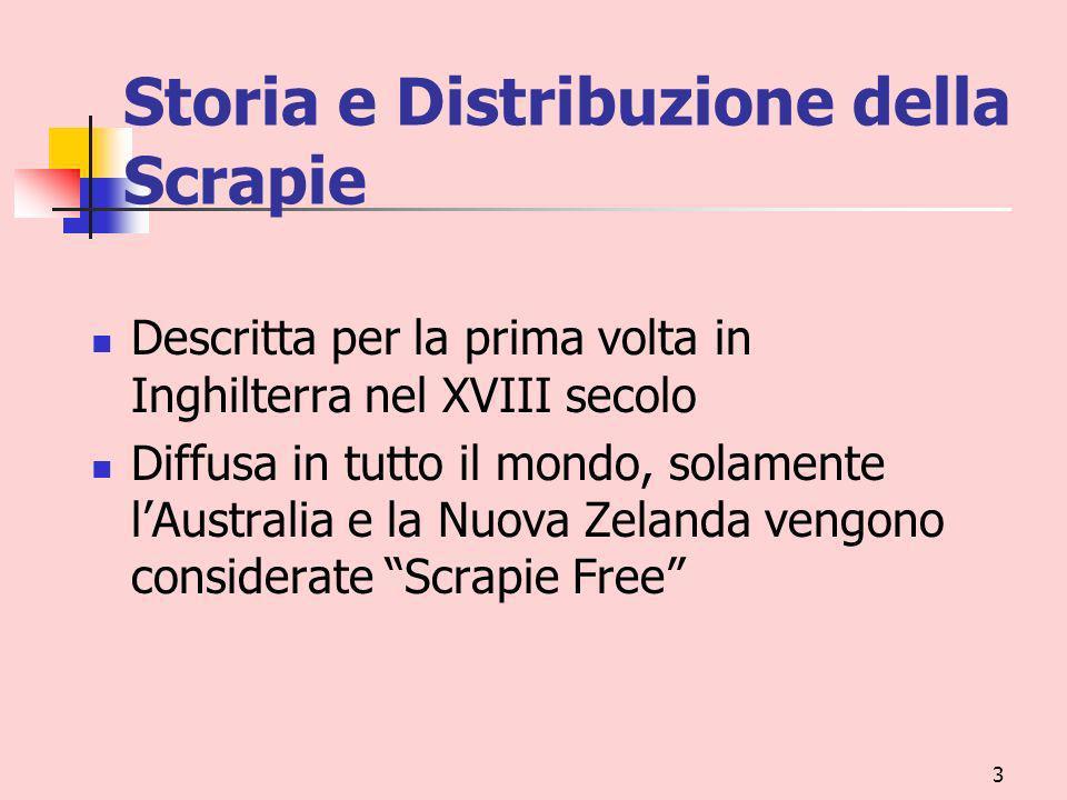 Storia e Distribuzione della Scrapie