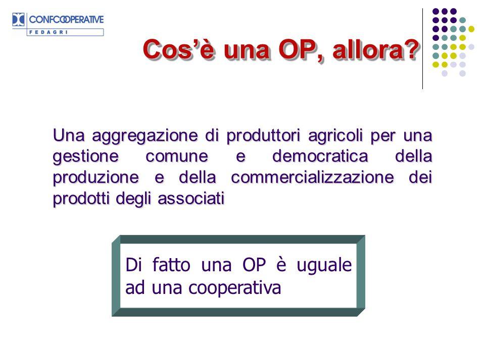 Cos'è una OP, allora Di fatto una OP è uguale ad una cooperativa