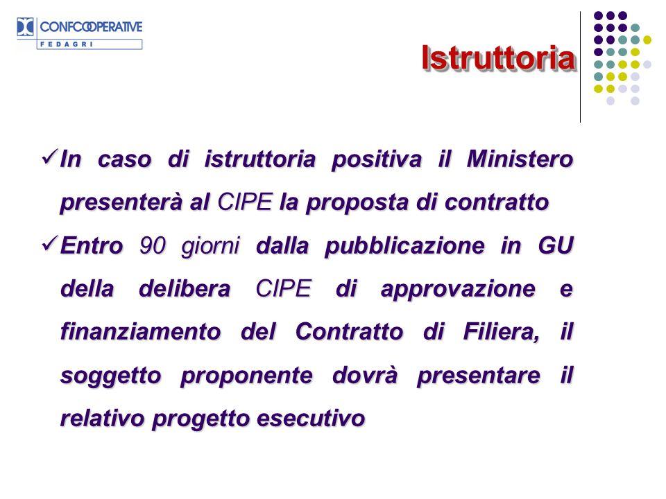 Istruttoria In caso di istruttoria positiva il Ministero presenterà al CIPE la proposta di contratto.