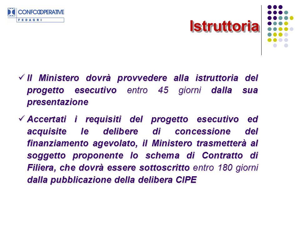 Istruttoria Il Ministero dovrà provvedere alla istruttoria del progetto esecutivo entro 45 giorni dalla sua presentazione.