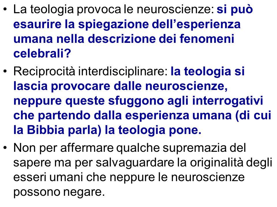La teologia provoca le neuroscienze: si può esaurire la spiegazione dell'esperienza umana nella descrizione dei fenomeni celebrali