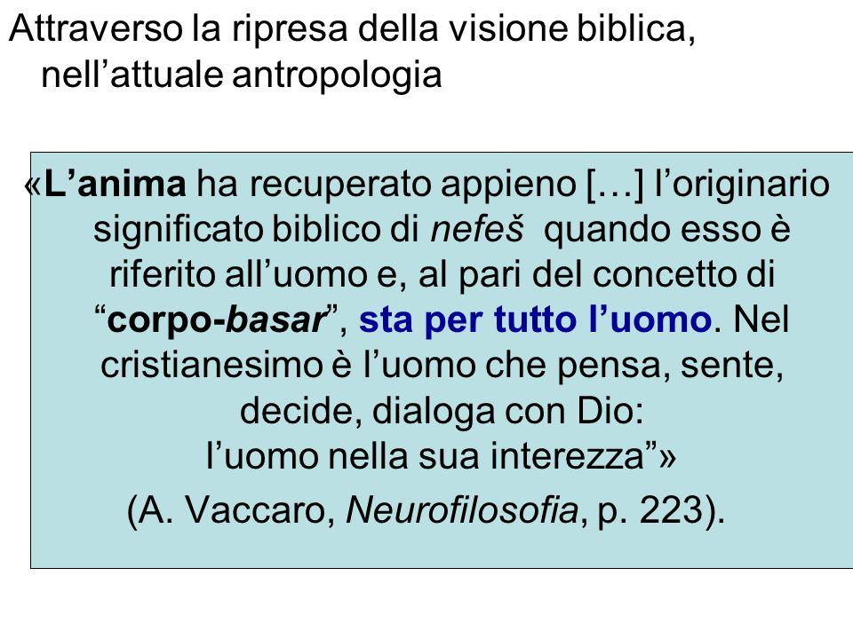 (A. Vaccaro, Neurofilosofia, p. 223).