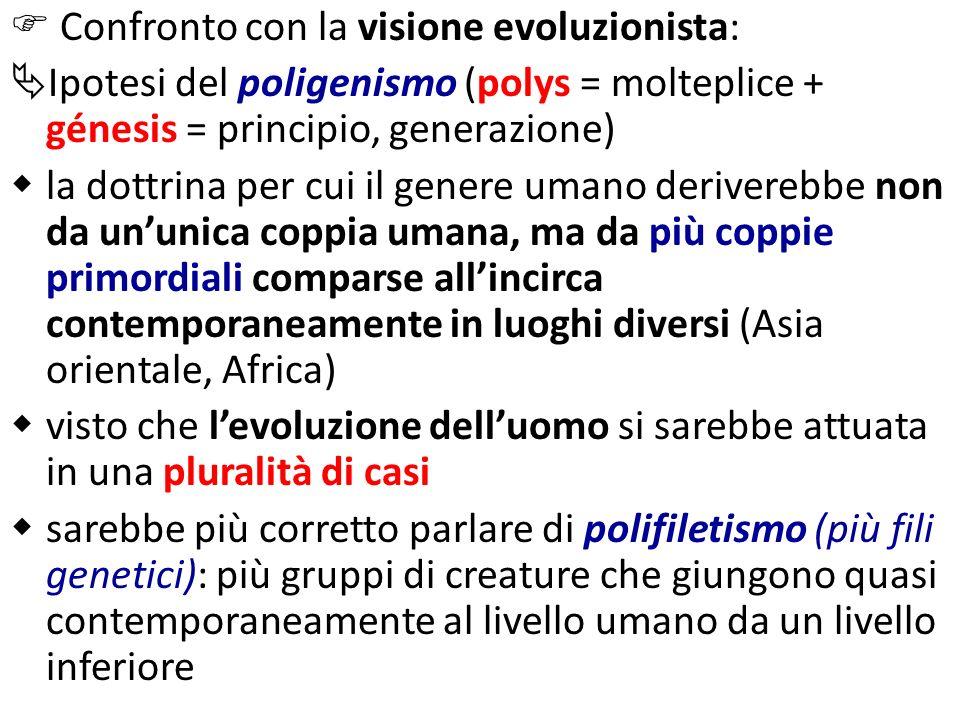  Confronto con la visione evoluzionista: