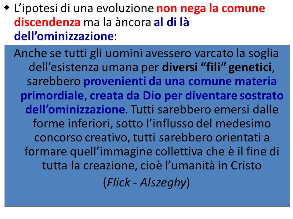 L'ipotesi di una evoluzione non nega la comune discendenza ma la àncora al di là dell'ominizzazione: