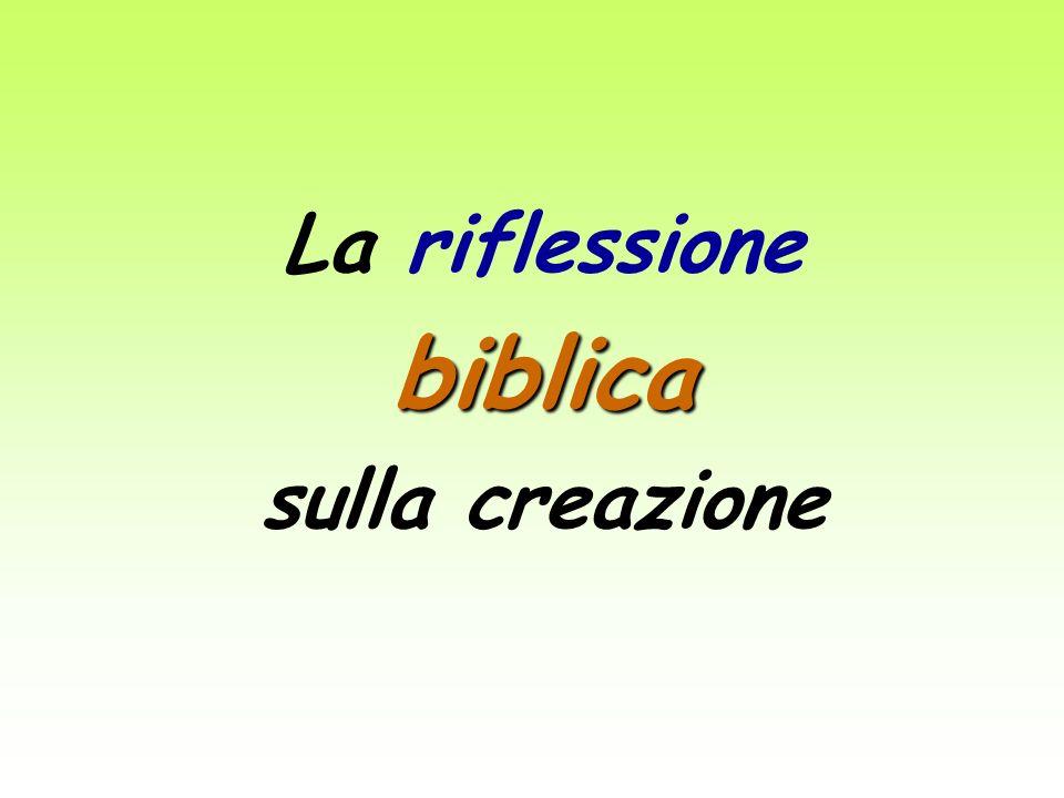 La riflessione biblica sulla creazione