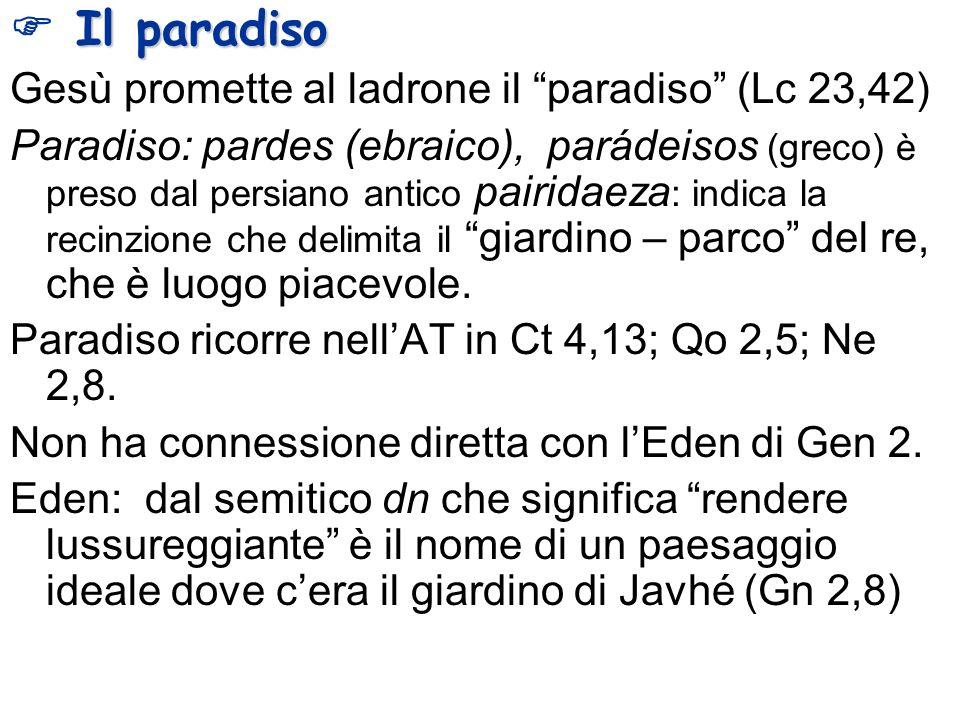  Il paradiso Gesù promette al ladrone il paradiso (Lc 23,42)