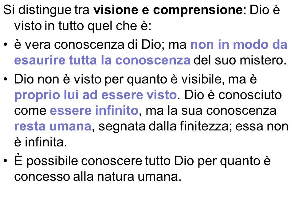 Si distingue tra visione e comprensione: Dio è visto in tutto quel che è: