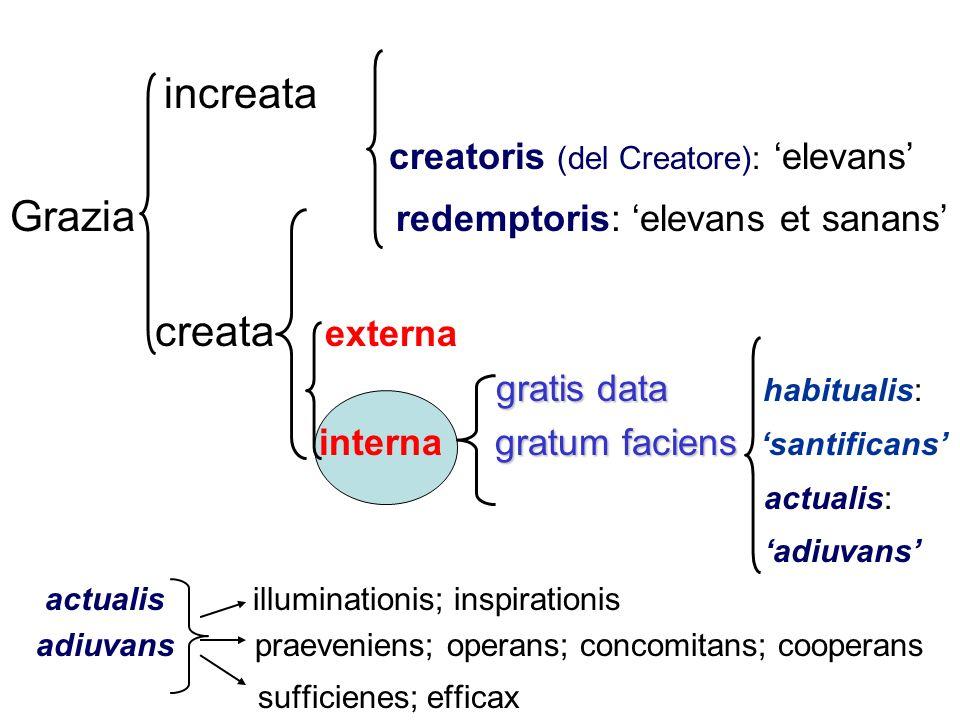 creatoris (del Creatore): 'elevans'