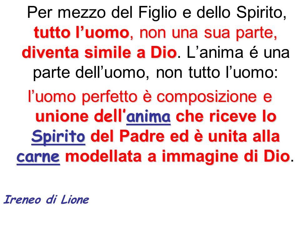 Per mezzo del Figlio e dello Spirito, tutto l'uomo, non una sua parte, diventa simile a Dio. L'anima é una parte dell'uomo, non tutto l'uomo:
