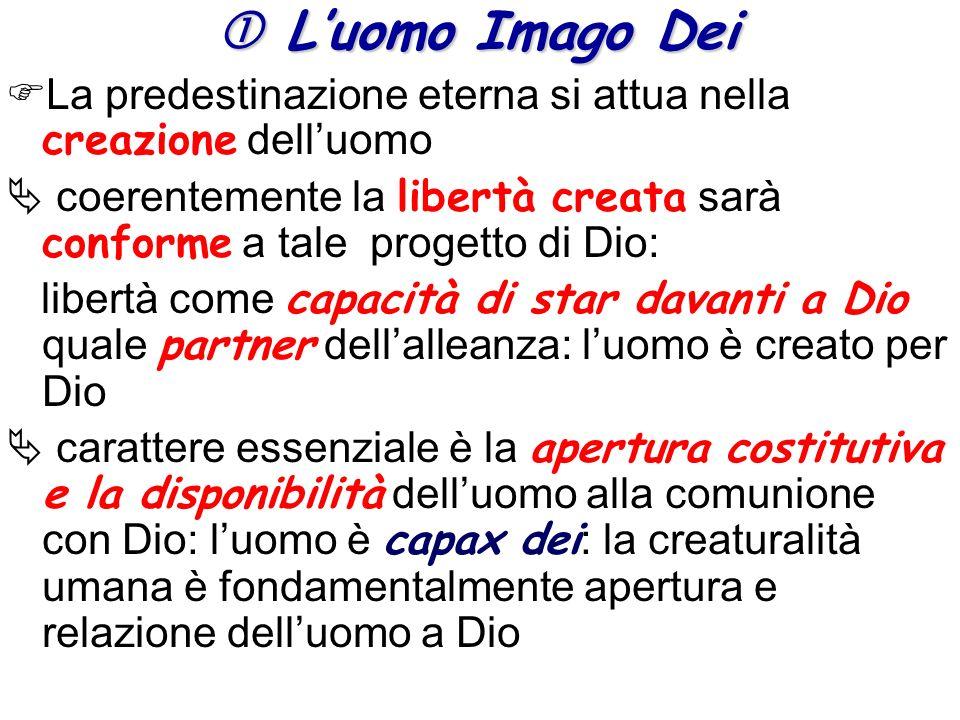  L'uomo Imago Dei La predestinazione eterna si attua nella creazione dell'uomo.