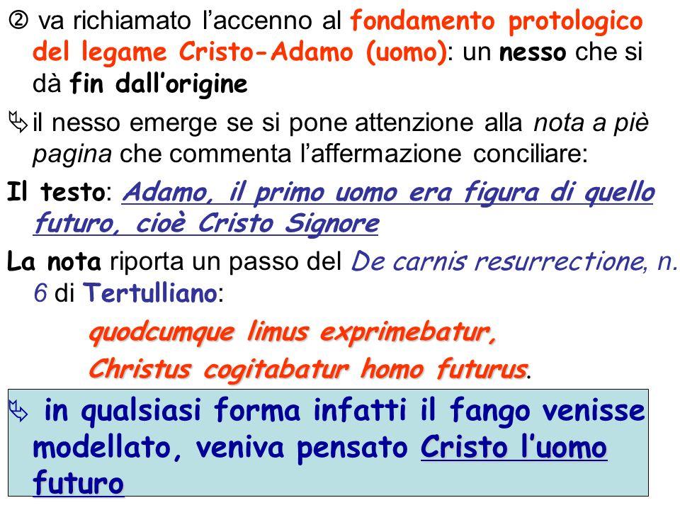  va richiamato l'accenno al fondamento protologico del legame Cristo-Adamo (uomo): un nesso che si dà fin dall'origine