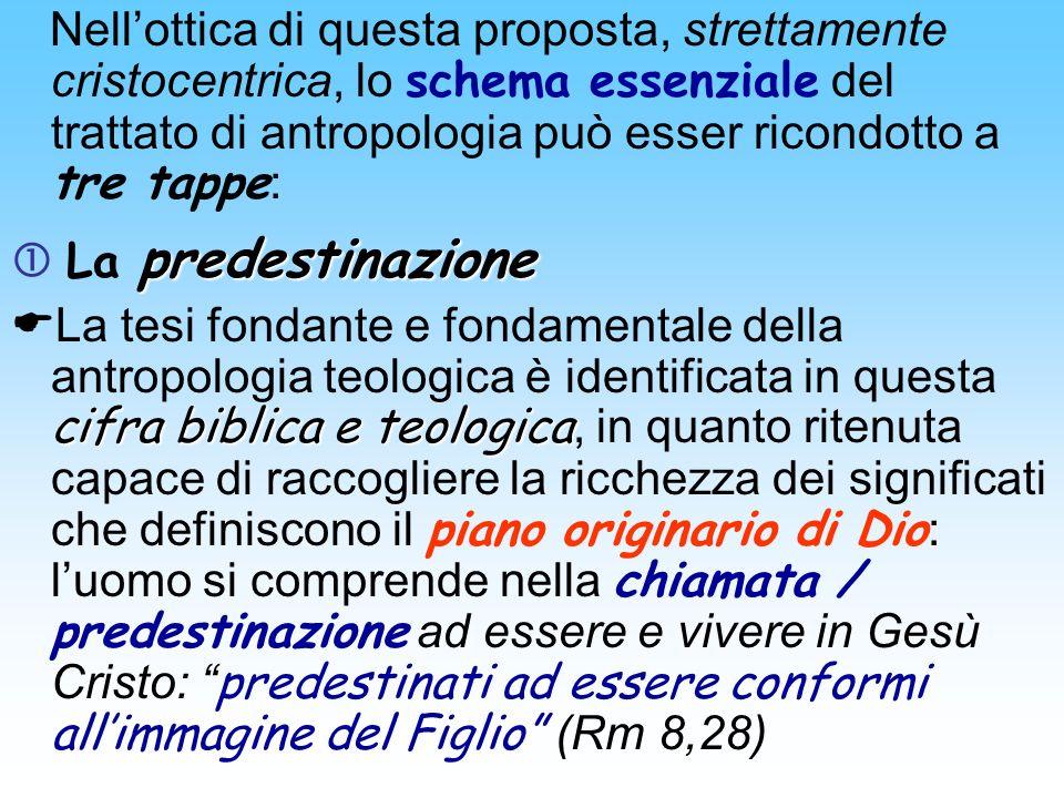 Nell'ottica di questa proposta, strettamente cristocentrica, lo schema essenziale del trattato di antropologia può esser ricondotto a tre tappe: