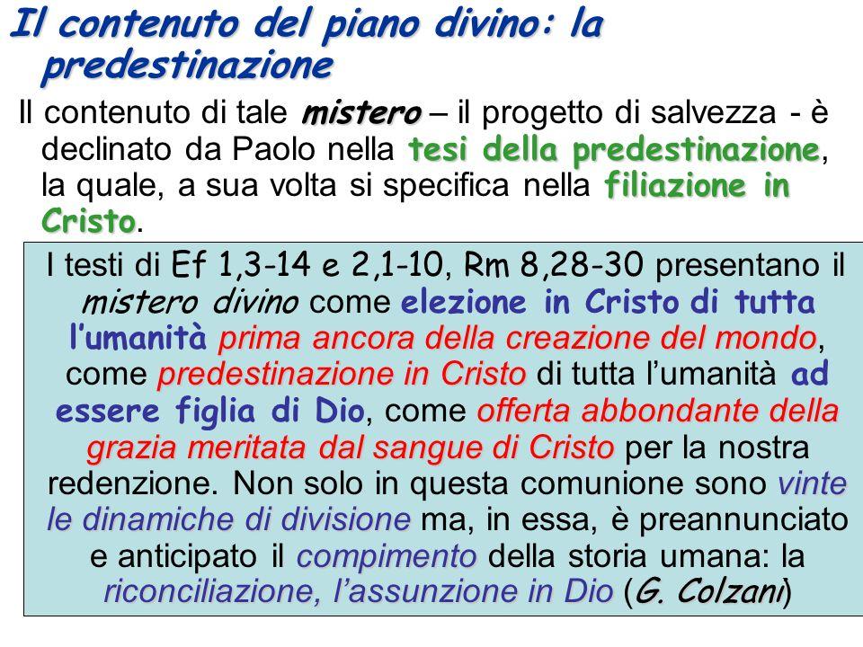 Il contenuto del piano divino: la predestinazione