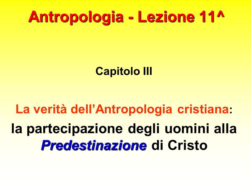 Antropologia - Lezione 11^