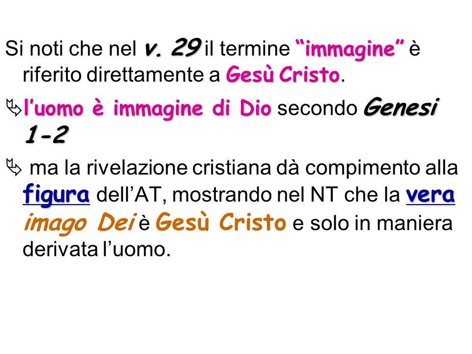 Si noti che nel v. 29 il termine immagine è riferito direttamente a Gesù Cristo.